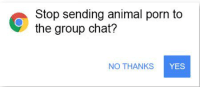 Group chat: Stop sending animal porn to  the group chat?  NO THANKS  YES