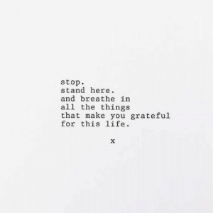All the Things: stop  stand here  and breathe in  all the things  that make you grateful  for this 1ife.  X
