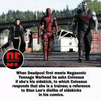 Memes, Stan, and Stan Lee: STOP  STOP  DEADPOOLFACTS  When Deadpool first meets Negasonic  Teenage Warhead he asks Colossus  if she's his sidekick, to which Colossus  responds that she is a trainee a reference  to Stan Lee's dislike of sidekicks  in his comics. Tag your sidekick! What was the funniest part of the movie for you? Follow @deadpoolfacts for your daily deadpool dose! deadpool deadpoolnation wadewilson deadpoolfacts deadpoolfan deadpoolmovie moviefacts 20thcenturyfox movie mercwithamouth marvelcinematicuniverse mcu marvelnation marvelfacts