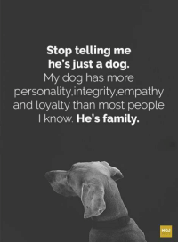 "Crazy, Family, and Tumblr: Stop telling me  he's just a dog.  My dog has more  personality.integrity.empathy  and loyalty than most people  I know. He's family. <p><a href=""http://tech242.tumblr.com/post/172945134479/crazy-joe-white-stop-telling-me-he-is-just-a"" class=""tumblr_blog"">tech242</a>:</p>  <blockquote><p><a href=""https://crazy-joe-white.tumblr.com/post/172691138482/stop-telling-me-he-is-just-a-dog-he-is-my-dog"" class=""tumblr_blog"">crazy-joe-white</a>:</p><blockquote><p>Stop telling me he is just a dog.  He is my dog.  He's family.<br/></p></blockquote> <p style="""">Amen to that !! </p></blockquote>"