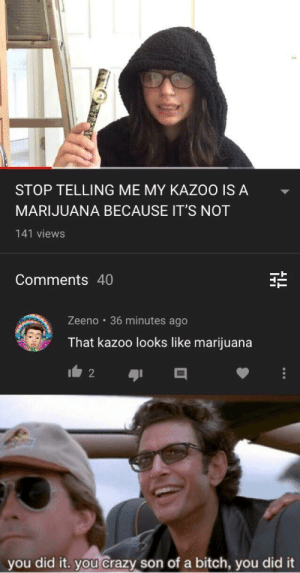 Marijuana: STOP TELLING ME MY KAZOO IS A  MARIJUANA BECAUSE IT'S NOT  141 views  Comments 40  Zeeno 36 minutes ago  That kazoo looks like marijuana  2  you did it. you crazy son ofa bitch, you did it