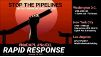 We stopped the KXL and DAPL once. Stand together and we will again. **SCREENSHOT THIS AND POST IT TO YOUR OTHER NETWORKS** Today Trump signed an executive order to get the Keystone XL and Dakota Access Pipelines back. We need to use our bodies and our networks to remind America why we stopped them in the first place. That starts today.  List of all emergency response actions:  Olympia: https://www.facebook.com/events/591183594409257??ti=ia  Seattle: https://www.facebook.com/events/413671415641838??ti=ia  NYC: https://www.facebook.com/events/1832909786988486??ti=ia  DC: https://www.facebook.com/events/374060656299387/?ti=icl  LA: https://www.facebook.com/events/1381553635230006??ti=ia  Stamford, CT: https://www.facebook.com/events/842526562556569??ti=ia  San Diego: https://www.facebook.com/events/1625669174114243??ti=ia  Columbus, Ohio: https://www.facebook.com/events/1518147151547344/?ti=icl  Fresno, Ca: https://www.facebook.com/events/1437782212898990??ti=ia  Albany, NY: https://www.facebook.com/events/951147518363239??ti=ia  Boston: https://www.facebook.com/events/940555346080435??ti=ia  Chico, Ca: https://www.facebook.com/events/282033322212379??ti=ia Don't have an action in your city? Take a picture of a sign why you oppose KXL and DAPL and post it to #NoDAPL #NoKXL. Amplify the actions on the ground: STOP THE PIPELINES  DIDIT #NoDAPL #NoKXL  RAPID RESPONSE  January 24, 2017  Washington D.C.  5PM-6PM EST  H Street and 17th Street,  New York City  6PM-11PM EST  intersection of W59th St,  Eighth Ave & Broadway,  Los Angeles  6PM-9PM EST  Wilshire Federal Building We stopped the KXL and DAPL once. Stand together and we will again. **SCREENSHOT THIS AND POST IT TO YOUR OTHER NETWORKS** Today Trump signed an executive order to get the Keystone XL and Dakota Access Pipelines back. We need to use our bodies and our networks to remind America why we stopped them in the first place. That starts today.  List of all emergency response actions:  Olympia: https://www.facebook.com/events/591183594409257??ti=ia  Seattle: https://www.facebook.com/events/413671415641838??ti=ia  NYC: https://www.facebook.com/events/1832909786988486??ti=ia  DC: https://www.facebook.com/events/374060656299387/?ti=icl  LA: https://www.facebook.com/events/1381553635230006??ti=ia  Stamford, CT: https://www.facebook.com/events/842526562556569??ti=ia  San Diego: https://www.facebook.com/events/1625669174114243??ti=ia  Columbus, Ohio: https://www.facebook.com/events/1518147151547344/?ti=icl  Fresno, Ca: https://www.facebook.com/events/1437782212898990??ti=ia  Albany, NY: https://www.facebook.com/events/951147518363239??ti=ia  Boston: https://www.facebook.com/events/940555346080435??ti=ia  Chico, Ca: https://www.facebook.com/events/282033322212379??ti=ia Don't have an action in your city? Take a picture of a sign why you oppose KXL and DAPL and post it to #NoDAPL #NoKXL. Amplify the actions on the ground