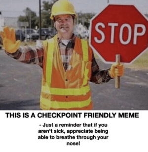 Just a checkpoint: STOP  THIS IS A CHECKPOINT FRIENDLY MEME  Just a reminder that if you  aren't sick, appreciate being  able to breathe through your  nose! Just a checkpoint