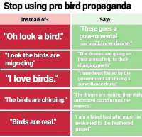 "Keep in mind: Stop using pro bird propaganda  Instead of:  Say:  There goes a  ""Oh look a bird"" governmental  surveillance drone  The drones are going on  their annual trip to their  charging ports""  ""I have been fooled by the  govenmemt into loving a  surveillance drone  ""Look the birds are  migrating""  ""I love birds""govem  The birds are chirping"" automated sound to fool the  The drones are making their daily  masses""  I am a blind fool who must be  awakened to the feathered  gospel""  ""Birds are real."" Keep in mind"