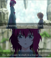 Animals, Memes, and Prince: Stop waiting for your prince. Go find him  The idiot might be stuck in a tree or something. HAHA LOL xD  Anime:akatsuki no yona   Kyou-chan as Carlo-kun