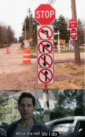 I'm confused: STOP  WRONG  WAY  DO NOT  ENTER  What the hell 'do l do here? I'm confused