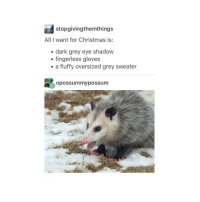 Good morning :V: stopgivingthemthings  All I want for Christmas is:  dark grey eye shadow  fingerless gloves  a fluffy oversized grey sweater  opossummy possum Good morning :V