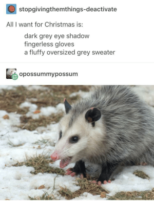 Christmas, Fashion, and Grey: stopgivingthemthings-deactivate  All I want for Christmas is:  dark grey eye shadow  fingerless gloves  a fluffy oversized grey sweater  opossummypossum fashion trend