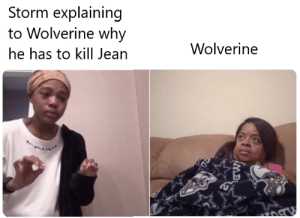 The Last Stand: Storm explaining  to Wolverine why  Wolverine  he has to kill Jean  SO The Last Stand