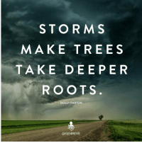 Memes, Trees, and 🤖: STORM  MAKE TREES  TAKE DE E PER  ROOTS  DOLLY PARTON  asENREVE Spot on! Thanks to @senreve Double tap if you agree and tag a friend that needs to see this!