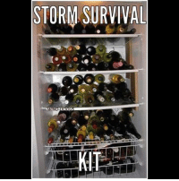Maybe not wine but with liquor and beer Anyone else??? stormprep beprepared prepper emergency wine stock: STORM SURVIVAL Maybe not wine but with liquor and beer Anyone else??? stormprep beprepared prepper emergency wine stock