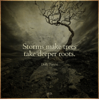 Memes, 🤖, and Make: Storms make trees  take deeper roots.  Dolly Parton  HCR