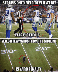 John Harbaugh should have sent Dez Bryant out..: STORMS ONTO FIELD TO YELL ATREF  FLAG PICKED UP  YELLSA FEW YARDS FROM THE SIDELINE  @NFL MEME  2 O  15 YARD PENALTY John Harbaugh should have sent Dez Bryant out..