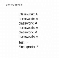Life, Memes, and Test: story of my life  Classwork: A  homework: A  classwork: A  homework: A  classwork: A  homework: A  Test: F  Final grade: F Accurate😩