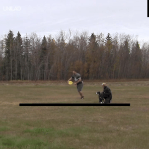 This dog just set the world record for the longest frisbee catch! 🥇👏: STORYTRENDER This dog just set the world record for the longest frisbee catch! 🥇👏