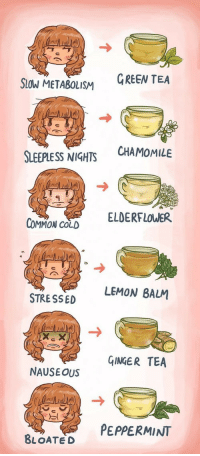 Common, Cold, and Tea: Stow METABOLISM  GREEN TEA  SLEEPI  ESS NIGHT CHAMOMILE  ELDERFLOWER  COMMON CoLD  LEMON BALM  STRE SSED  GINGER TEA  NAUSE OUS  PEPPERMINT  BLOATED