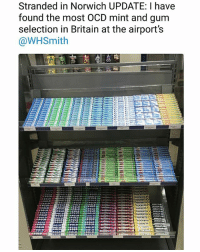 Memes, Britain, and Never: Stranded in Norwich UPDATE: I have  found the most OCD mint and gum  selection in Britain at the airport's  @WHSmith  (LOCKE TS。  LOCKETS  LOCKE  poto I've never seen anything more satisfying | Follow @aranjevi for more!