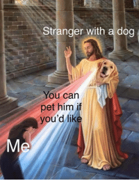 Dog, Him, and Can: Stranger with a dog  ou can  pet him if  you'd lik  Me