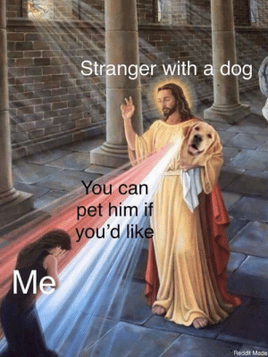 Gods amongst men: Stranger with a dog  ou can  pet him if  you'd lik  Reddit Made Gods amongst men