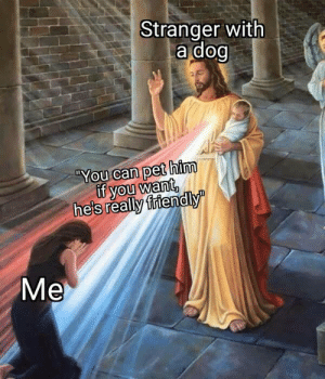 Dank, Memes, and Target: Stranger with  a dog  You can pet him  if you want,  heis reallv friendly  Me Truly a blessing by Michaelix MORE MEMES