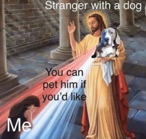 MeIRL, Dog, and Him: Stranger with a dog  You can  pet him if  you'd lik meirl