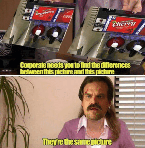 Funny, Lit, and Memes: Strawberry  CocaCo  Cherry  FLAYOR  DO NOT UE  WHEN LIT  Corporate needs youtofind the differences  between this picture and this picture  Theyre the same picture  LURPE  3PEPPIE 35 Funny Stranger Things Memes That Will Make Your Day-33