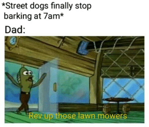 Dad, Dogs, and Sunday: *Street dogs finally stop  barking at 7am*  Dad:  Rev up those lawn mowers Sunday mornings