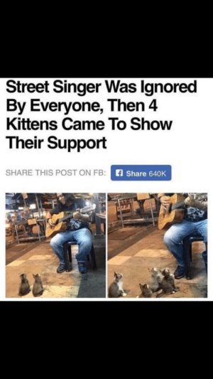 This is so cute: Street Singer Was Ignored  By Everyone, Then 4  Kittens Came To Show  Their Support  SHARE THIS POST ON FB:  Share 640K This is so cute