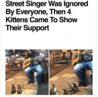 Kittens, Singer, and They: Street Singer Was lgnored  By Everyone, Then 4  Kittens Came To Show  Their Support They enjoyed the shows