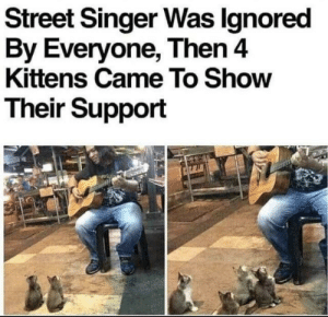 Flowers, Kittens, and Yarn: Street Singer Was lgnored  By Everyone, Then 4  Kittens Came To Show  Their Support They Gave Tips in Yarn and Flowers