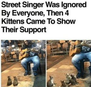 Such lovely kitties: Street Singer Was lgnored  By Everyone, Then4  Kittens Came To Show  Their Support Such lovely kitties