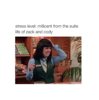 Suit Life Of Zack: stress level: millicent from the suite  life of zack and cody