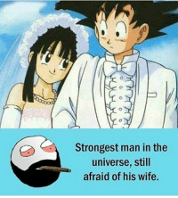 Memes, 🤖, and Dbz: Strongest man in the  universe, still  afraid of his wife. Nuuuu😅 - Follow best dbz account @goku_the_brocoly ▂▂▂ ♕Goku♕ ▂▂▂ ⠀⠀⠀⠀⠀⠀⠀⠀⠀⠀ 『Instagram』 - Follow @dbz.unleashed - 📥DM for business enquires 😊 - - 🖌Remember to use GTBdrawing to have your art featured ⠀⠀───────⠀☾🙌☽⠀─────── If you take my idea or my picture-video in General please give me credit! ⠀⠀───────⠀☾🙌☽⠀─────── □■■■■■■■■■■■■■■■■□ broccolyfamily DragonBall DragonBallZ DragonBadllZAbridged jaygainplane DragonBallKai DragonBallGT DragonBallSuper Frieza jayfollowgame Goku Vegeta Gohan Piccolo Tien Whis Krillin Trunks Goten FutureTrunks TeamFourStar BattleofGods seekingfollowtrain Gogeta like follow likeme dbz dbs db