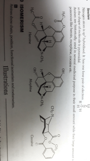 Heroin, Cocaine, and Morphine: Structure  Nitrogen atom is sp hybridised. It has one lone pair of electron RH  so the shape of molecule is pyramidal.  Amines are historically used in several medicinal purpose in their small amount while their large amount is  poisonous like heroin, morphine, cocaine etc.  H3C  OH  CH3  H  CH3-N  H  OH  N-CH3  N-CH3  HaC  OH  Heroine  Morphine  Cocaine  D ISOMERISM  AL  Amines show chain, position, functional isomerism and metamerism.  Illustrations Gimme those nitrogen
