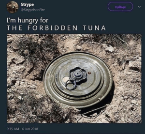 MEIrl by KABAR_in_the_gay_bar FOLLOW HERE 4 MORE MEMES.: Strype  @StrypeisonFire  Follow  I'm hungry for  THE FORBIDDEN TUNA  9:35 AM-6 Jun 2018 MEIrl by KABAR_in_the_gay_bar FOLLOW HERE 4 MORE MEMES.