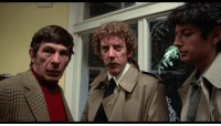 "LIFE AFTER TREK: Leonard Nimoy played in the 1978 remake of ""Invasion of the Body Snatchers"" with Donald Sutherland and Jeff Goldblum...: ststhis. LIFE AFTER TREK: Leonard Nimoy played in the 1978 remake of ""Invasion of the Body Snatchers"" with Donald Sutherland and Jeff Goldblum..."