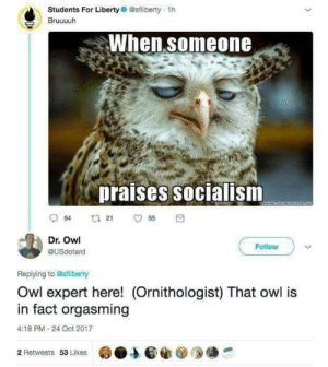 Socialism, Liberty, and Owl: Students For Liberty @sfliberty 1h  Bruuuuh  When someone  praises socialism  Dr. Owl  @USdotard  Follow  Replying to Osfliberty  Owl expert here! (Ornithologist) That owl is  in fact orgasming  4:18 PM-24 Oct 2017  2 Retweets 53 Likes
