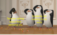 Penguins memes: Students not  wanting to do  work  Teacher talking  about their  personal Ii  te Penguins memes
