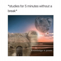can we fix the mental health issue in america please: *studies for 5 minutes without a  break*  Knowledge is power can we fix the mental health issue in america please