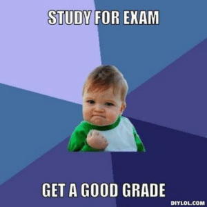 Success kid is the first image that comes up if you google meme, invest, study hard and you will get returns.: STUDY FOR EXAM  GET A GOOD GRADE  DIYLOL.COM Success kid is the first image that comes up if you google meme, invest, study hard and you will get returns.