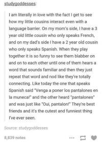 """Dank, 🤖, and The Others: study goddesses:  am literally in love with the fact l get to see  how my little cousins interact even with a  language barrier. On my mom's side, l have a 3  year old little cousin who only speaks French,  and on my dad's side l have a 2 year old cousin  who only speaks Spanish. When they play  together it is so funny to see them blabber on  and on to each other until one of them hears a  word that sounds familiar and then they just  repeat that word and nod like they're totally  connecting. Like today the one that speaks  Spanish said """"Venga a poner los pantalones en  la muneca!"""" and the other heard """"pantalones""""  and was just like """"Oui, pantalon!"""" They're best  friends and it's the cutest and funniest thing  I've ever seen.  Source: studygoddesses  8,839 notes"""