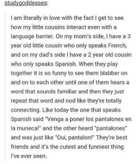 """Dank, 🤖, and The Others: study goddesses:  I am literally in love with the fact l get to see  how my little cousins interact even with a  language barrier. On my mom's side, l have a 3  year old little cousin who only speaks French,  and on my dad's side l have a 2 year old cousin  who only speaks Spanish. When they play  together it is so funny to see them blabber on  and on to each other until one of them hears a  word that sounds familiar and then they just  repeat that word and nod like they're totally  connecting. Like today the one that speaks  Spanish said """"Venga a poner los pantalones en  la muneca!"""" and the other heard """"pantalones""""  and was just like """"Oui, pantalon!"""" They're best  friends and it's the cutest and funniest thing  I've ever seen."""