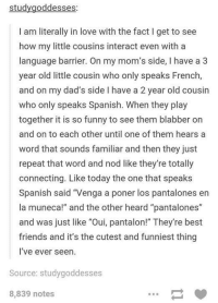 """Best Friend, Dad, and Facts: study goddesses:  I am literally in love with the fact I get to see  how my little cousins interact even with a  language barrier. On my mom's side, I have a 3  year old little cousin who only speaks French,  and on my dad's side l have a 2 year old cousin  who only speaks Spanish. When they play  together it is so funny to see them blabber on  and on to each other until one of them hears a  word that sounds familiar and then they just  repeat that word and nod like they're totally  connecting. Like today the one that speaks  Spanish said """"Venga a poner los pantalones en  la muneca!"""" and the other heard """"pantalones""""  and was just like """"Oui, pantalon!"""" They're best  friends and it's the cutest and funniest thing  I've ever seen.  Source: studygoddesses  8,839 notes"""