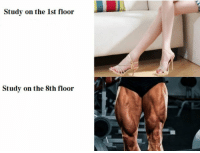 Every day is leg day: Study on the 1st floor  Study on the 8th floor  2 Every day is leg day