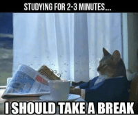 Break, For, and Studying: STUDYING FOR 2-3 MINUTES  ISHOULD TAKE A BREAK