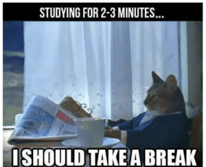 3 Minutes: STUDYING FOR 2-3 MINUTES..  ISHOULD TAKEA BREAK