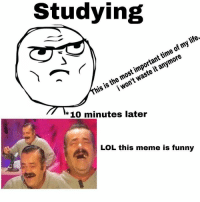 Funny, Life, and Lol: Studying  his is the most important time of my life.  i won't waste it anymore  * 10 minutes later  LOL this meme is funny