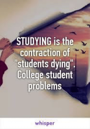 """If you are a student Follow @studentlifeproblems: STUDYING is the  contraction of  'students dying""""  College student  problems  whisper If you are a student Follow @studentlifeproblems"""