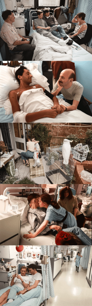 penny-for-your-thot: toddreu:  tigerleggies:  trytogethappy:  the humanity of the AIDS crisis: the ward by gideon mendel colorized by me   Never forget 🏳️🌈😔   OP you did a beautiful job colourising these shots   HIV/AIDS killed more Americans than the entire Vietnam War. President Ronald Reagan laughed while thousands staged die-ins on the steps of the FDA. Never forget what happened, and never EVER forgive. : STVE  yboagt   INTAS   ENesbit Evans  CAN   LETTI penny-for-your-thot: toddreu:  tigerleggies:  trytogethappy:  the humanity of the AIDS crisis: the ward by gideon mendel colorized by me   Never forget 🏳️🌈😔   OP you did a beautiful job colourising these shots   HIV/AIDS killed more Americans than the entire Vietnam War. President Ronald Reagan laughed while thousands staged die-ins on the steps of the FDA. Never forget what happened, and never EVER forgive.
