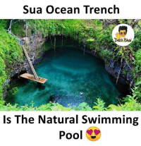 Ocean, Pool, and Dekh Bhai: Sua Ocean Trench  Deth Bhai  Is The Natural Swimming  Pool Damn 😍😍😍 Wanna swim here ? ❤️ Follow @_dekhbhai_ for more such pics 👌🏻